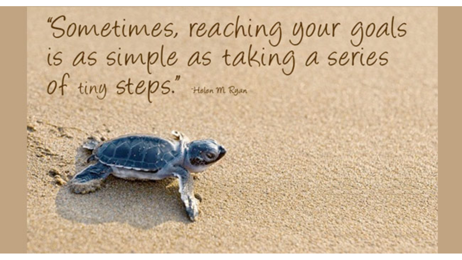 turtle in the sand with quotes above