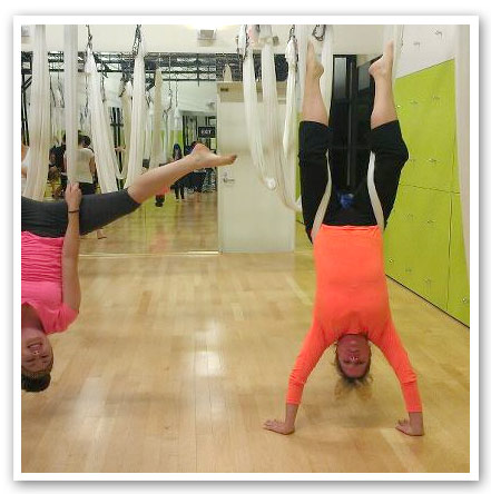 anti gravity yoga Teri Mcquaid
